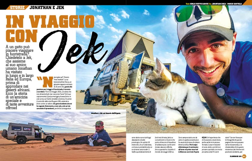 Il gatto da viaggio